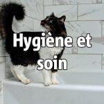 Hygiène et soin