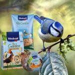 Alimentation Oiseaux du Ciel