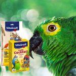 Autres friandises oiseaux